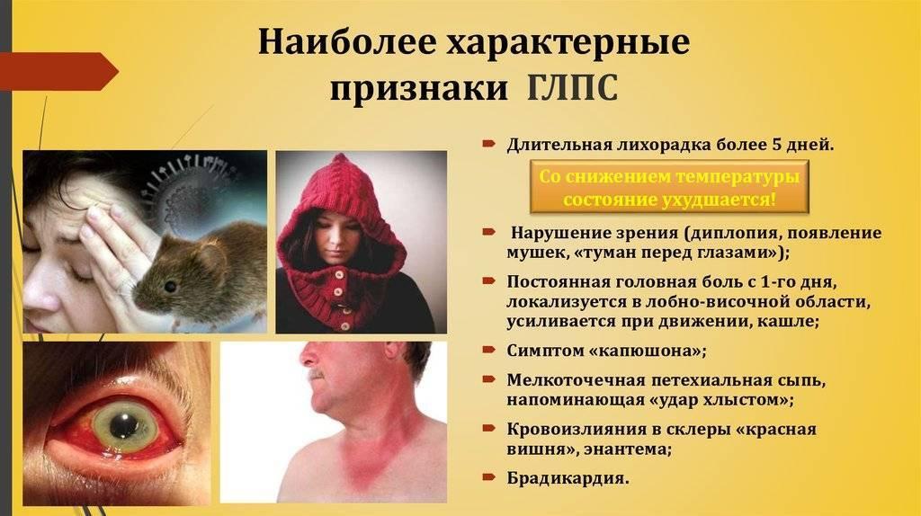 Мышиная лихорадка: симптомы у детей, лечение и профилактика заболевания