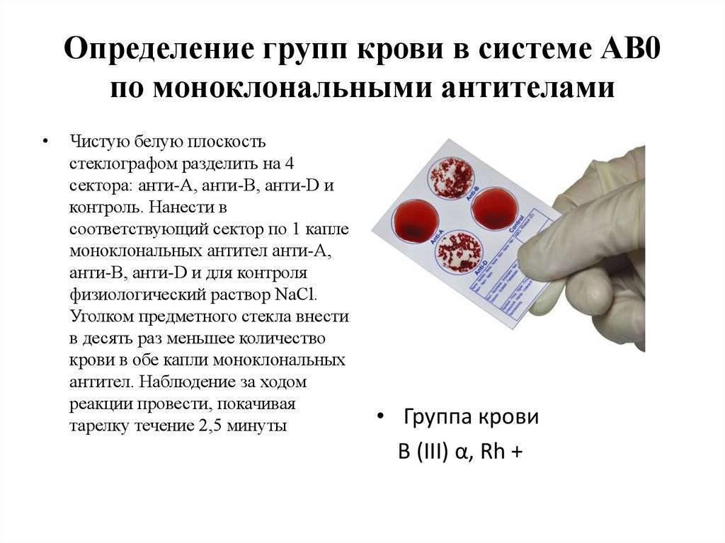 Определение резус-фактора плода по крови матери: анализ, ребенка, как проходит исследование