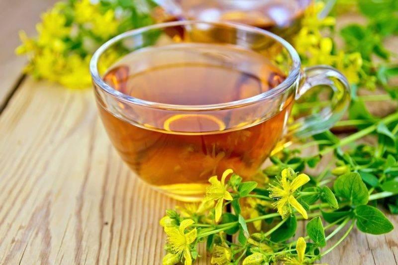 Какие травы помогают при лечении кашля у детей и взрослых