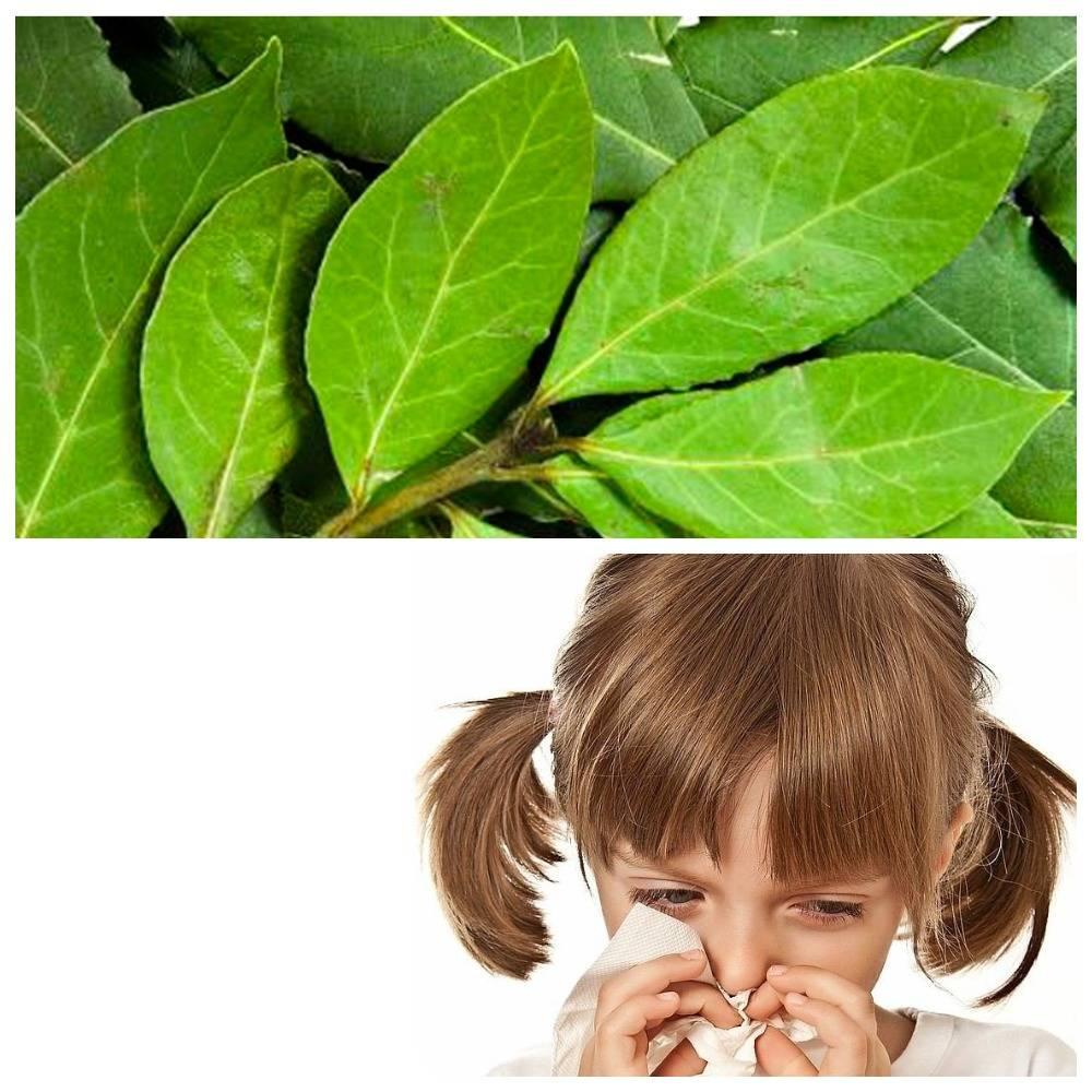 Лечение аллергии у детей народными средствами