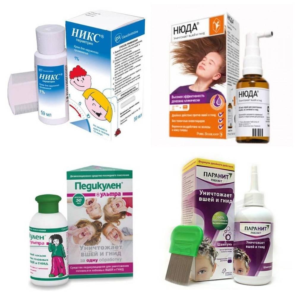 Педикулез – причины, профилактика, меры борьбы и лечение