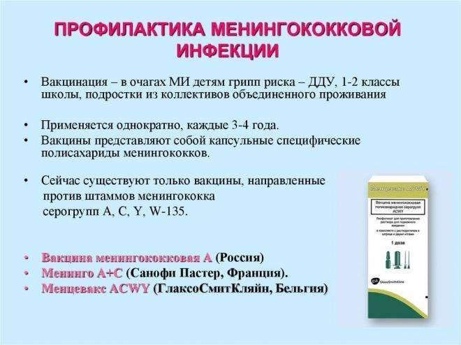 Менингококковая инфекция: формы, профилактика, симптомы и лечение заболевания у детей и взрослых