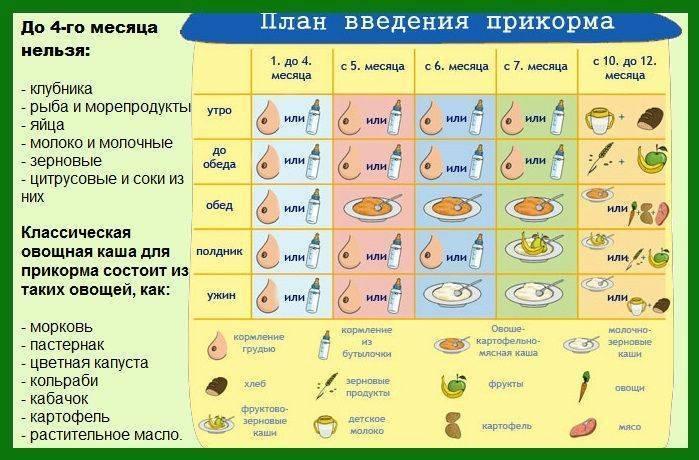 Как вводить кашу в прикорм, первый прикорм как выбрать и приготовить кашу