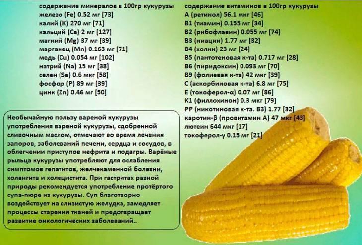 С какого возраста ребенку можно давать кукурузу вареную