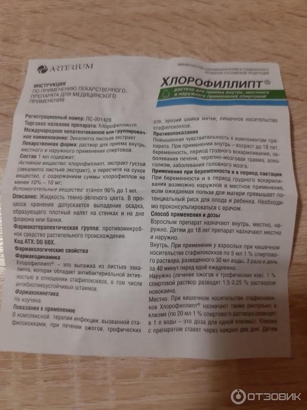 Хлорофиллипт для полоскания горла: инструкция. отзывы. как применять?