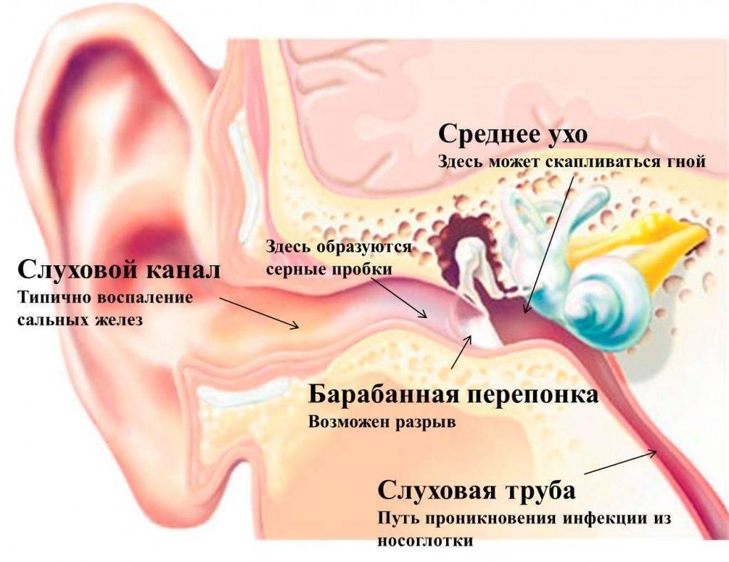 Заложенность и боль в ухе – причины и лечение