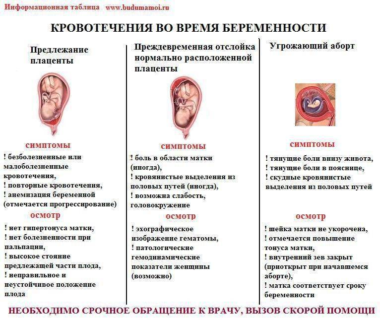 Жажда при беременности