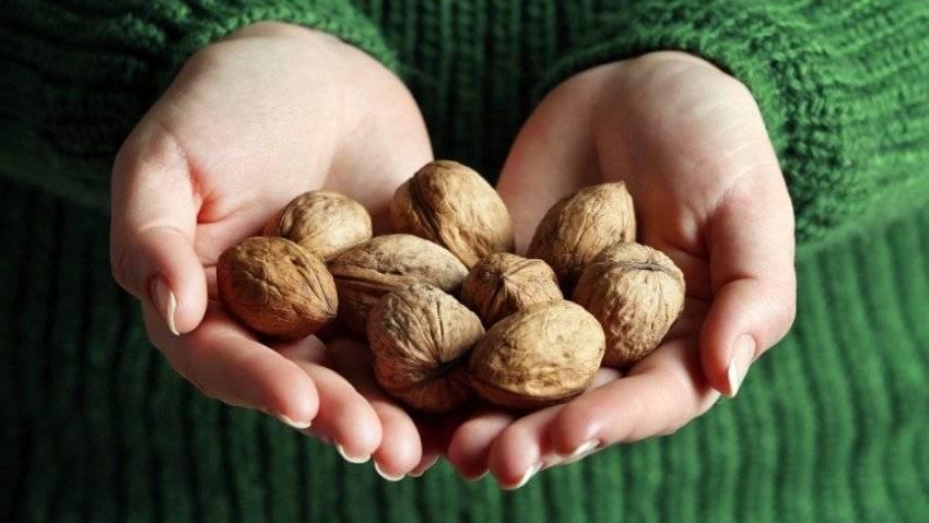 О полезных (и не очень) свойствах бразильского ореха для будущих мам