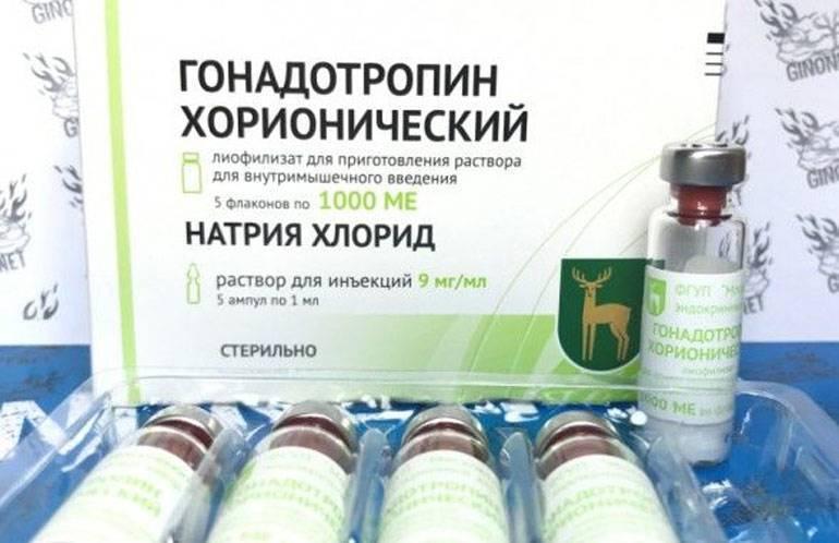 Гонадотропин хорионический для мужчин — инструкция по применению лекарственного средства