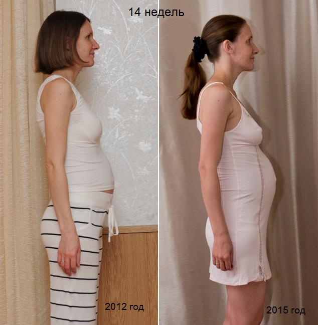 Когда живот начинает расти при беременности на каком сроке неделе месяце