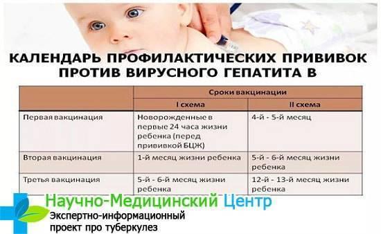 Какие прививки делают новорожденным детям в роддоме