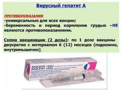Прививка от гепатита ребенку: куда делают, схема вакцинации