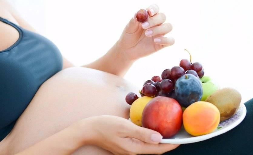 Вегетарианство и беременность: личный опыт. вегетарианство при беременности: польза и вред, мнение врачей