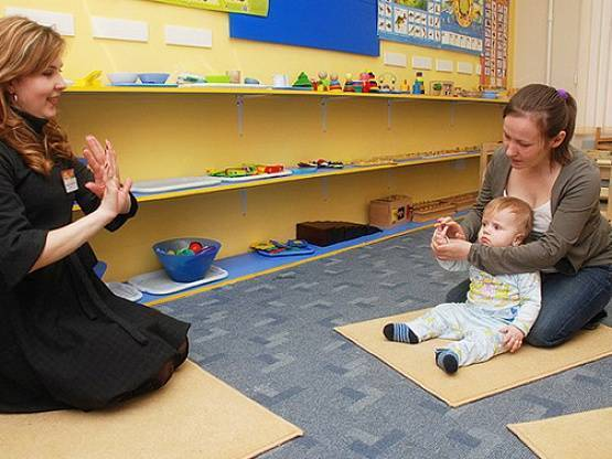 Учебно-методический материал на тему:   консультация для родителей  «обзор  методик раннего развития ребенка: основные достоинства и недостатки» | социальная сеть работников образования