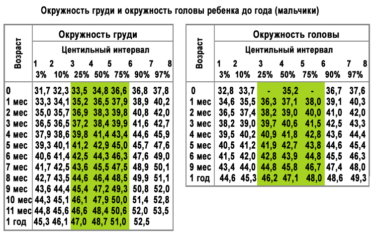 Таблица соотношение головы и грудной клетки у детей