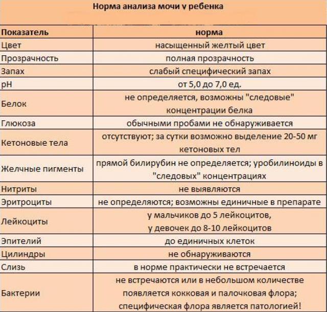 Бактерии в моче у ребенка — симптомы и способы лечения, причины возникновения - proinfekcii.ru