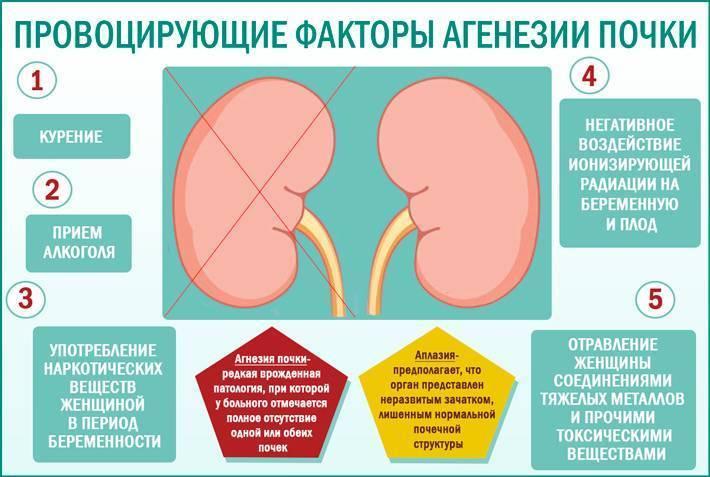 Врожденные аномалии почек. агенезия почек