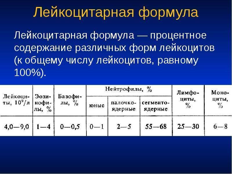 Лейкоцитарная формула крови: расшифровка у взрослых, норма в таблице