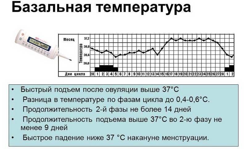 Температура во время менструального цикла: какая норма при месячных, может ли повышаться в первые дни? - малышок