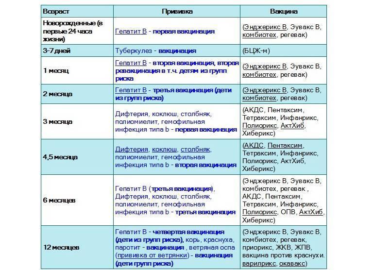 Прививка от гепатита в: сколько раз делать в жизни?