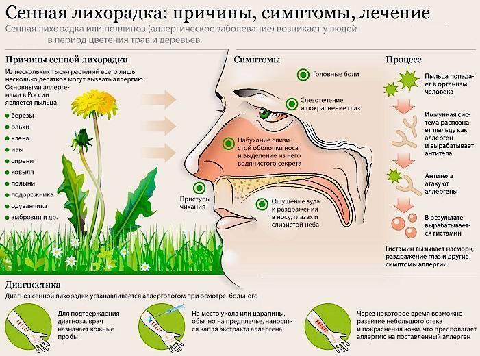 Как проявляется аллергия на цветение у детей весной: симптомы и лечение