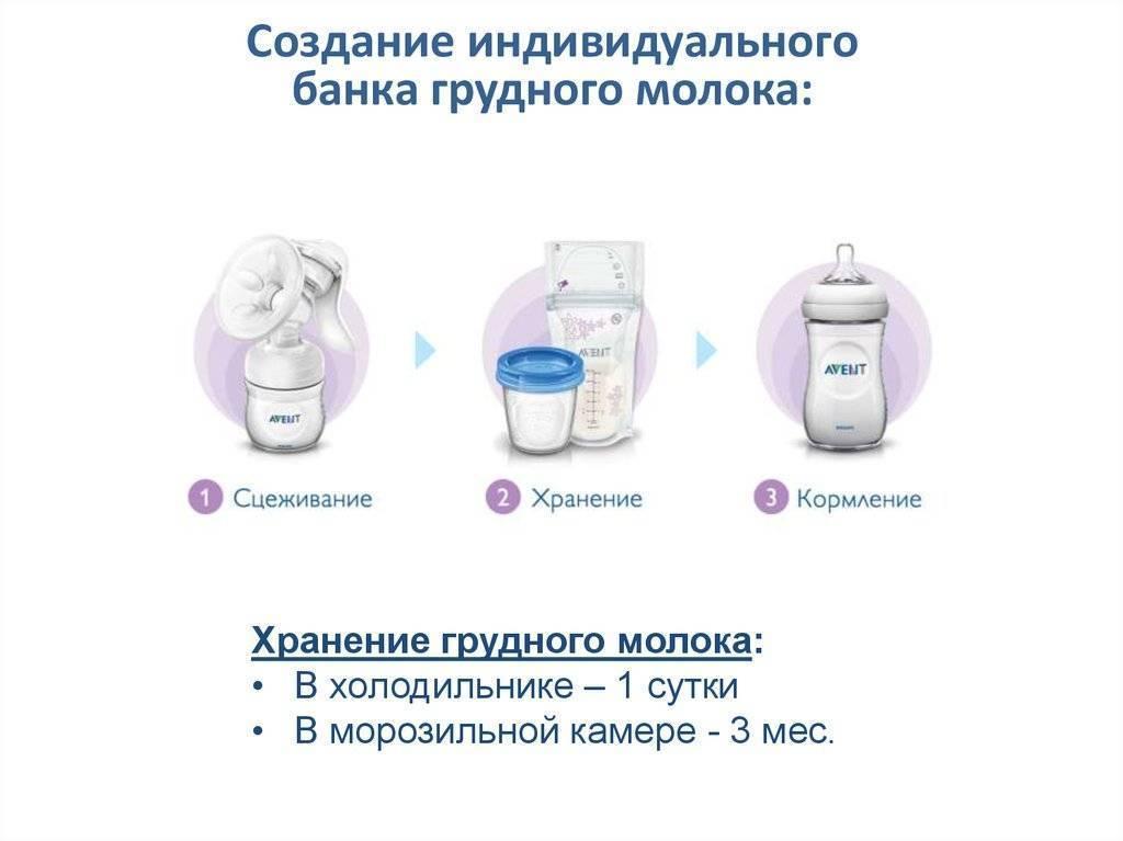 Как сцеживать грудное молоко руками?