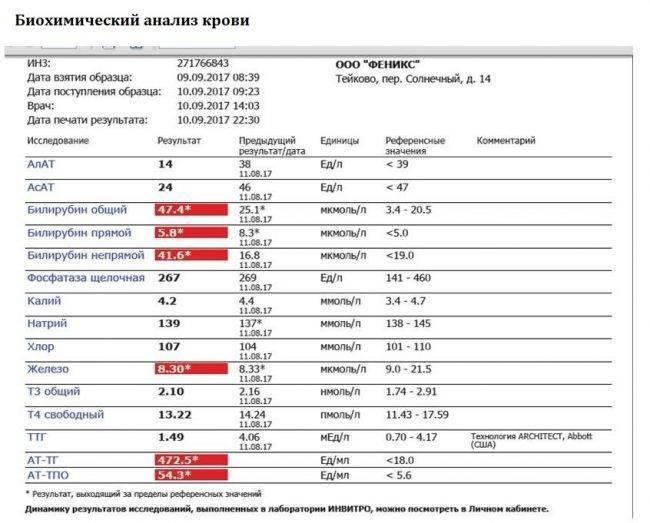 Анализ крови на мононуклеоз у детей и взрослых: расшифровка, показатели pulmono.ru анализ крови на мононуклеоз у детей и взрослых: расшифровка, показатели