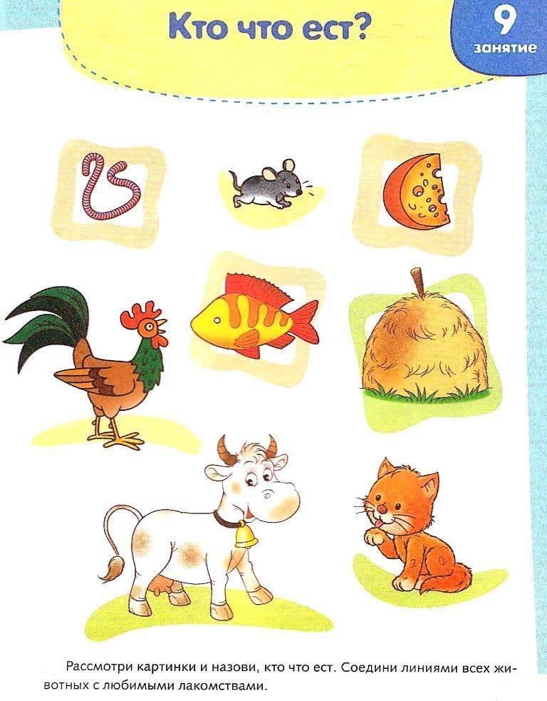 Интересные занятия для детей в возрасте 4-5 лет