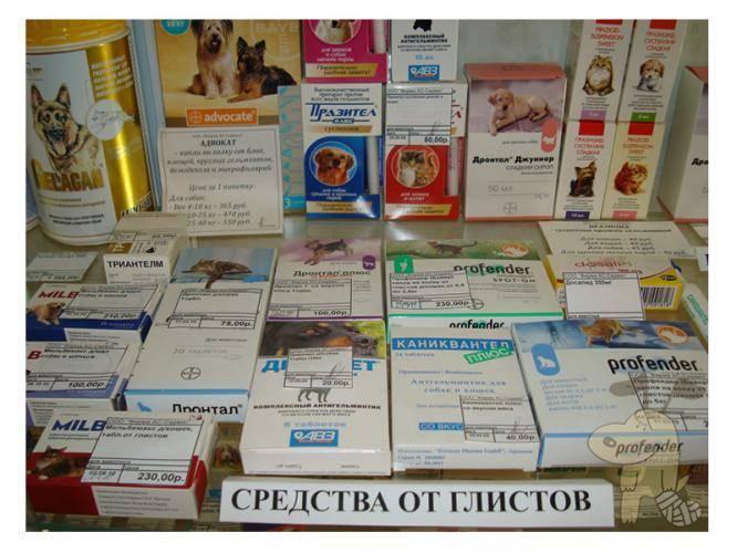 Таблетки от глистов для детей – самые эффективные и безопасные противоглистные препараты