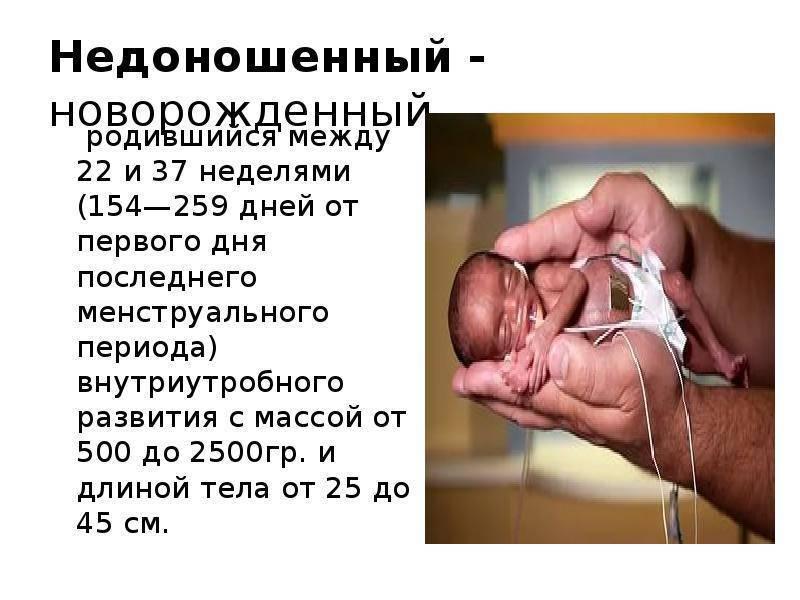 Статистика вторых родов