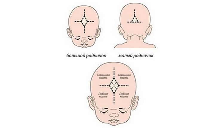 Основные причины, по которым западает родничок у малыша. стоит ли волноваться родителям? когда необходимо обратиться к врачу?