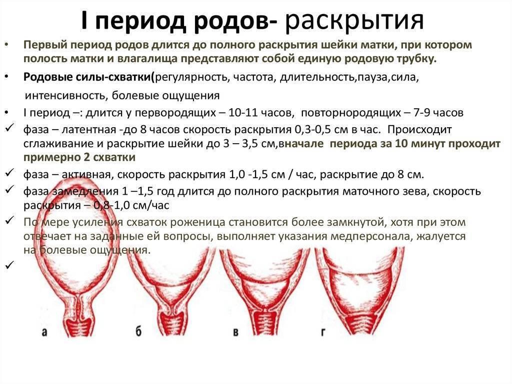 Что значит расширен внутренний зев. расширение внутреннего зева. где это находится