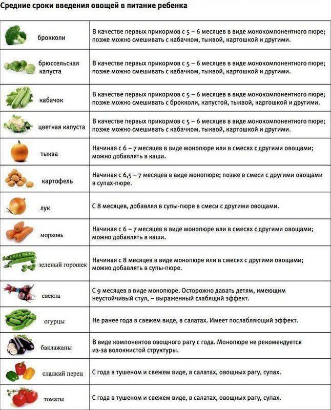 Когда можно перец ребенку. когда можно кушать болгарский перец ребенку. в каком виде давать болгарский перец ребенку