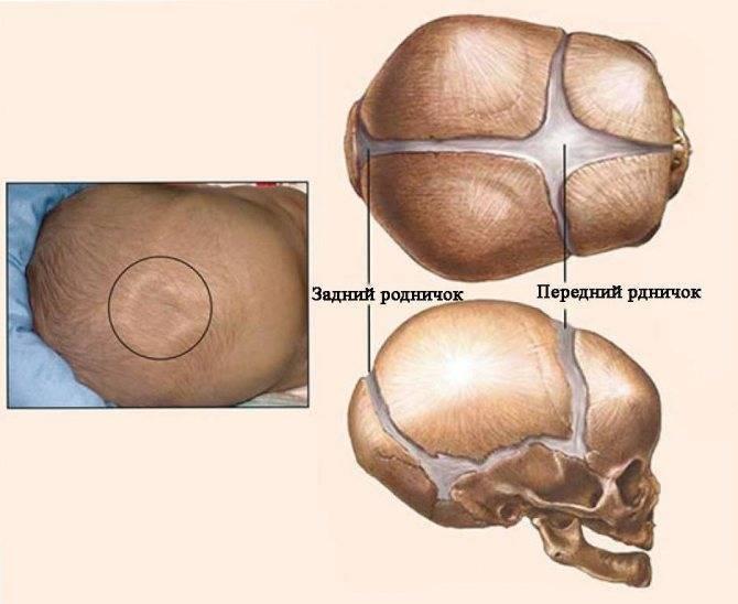 Почему у грудничка пульсирует родничок: нормально ли это, что делать