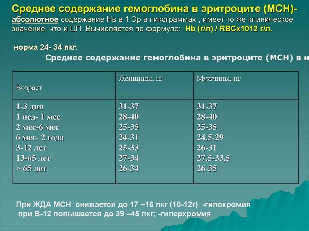 Концентрация hb в эритроцитах повышена у взрослого — про сосуды