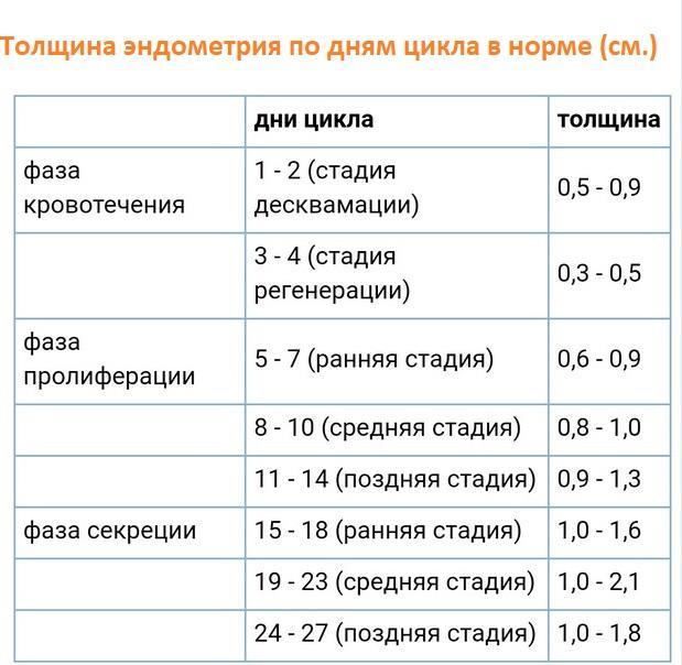 Эндометрий при беременности: когда возможно вынашивание / mama66.ru