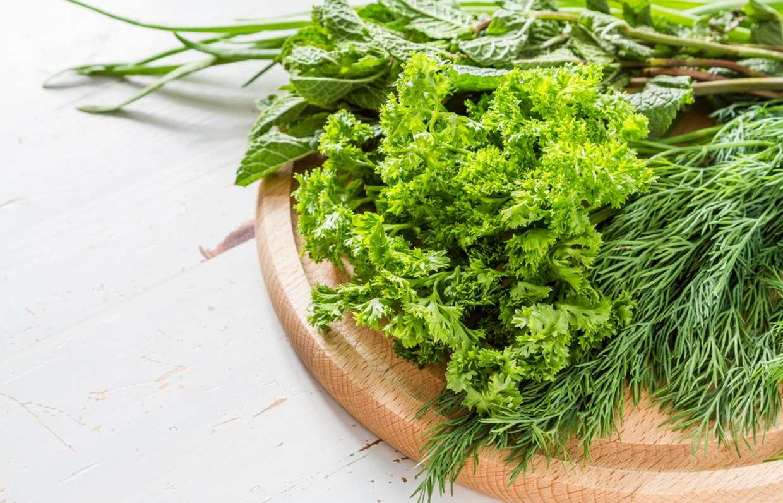 Можно ли зелень кормящей маме? | уроки для мам