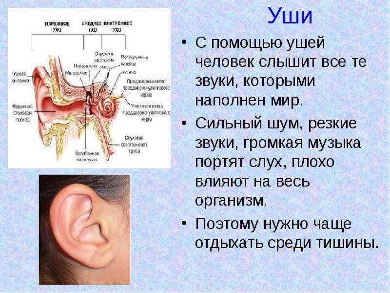 У ребенка заложено ухо но не болит чем лечить