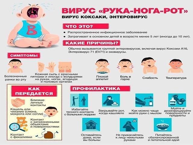 """""""вирус коксаки у детей: чем опасна болезнь, как лечить и избежать заражения?"""""""