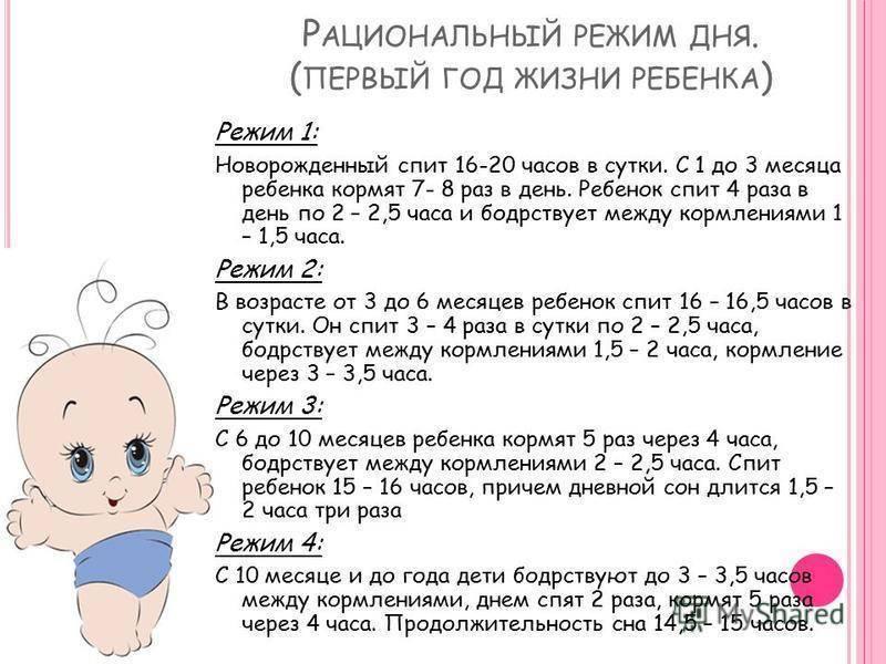 Распорядок дня для годовалого ребенка по часам: как сделать правильный режим