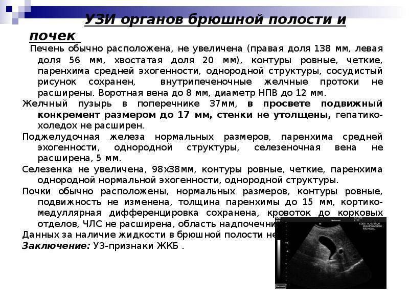 Абдоминальное узи (трансабдоминальное): что это такое, датчик, подготовка к процедуре, диета, исследование с допплерографией сосудов, гинекологическое у женщин