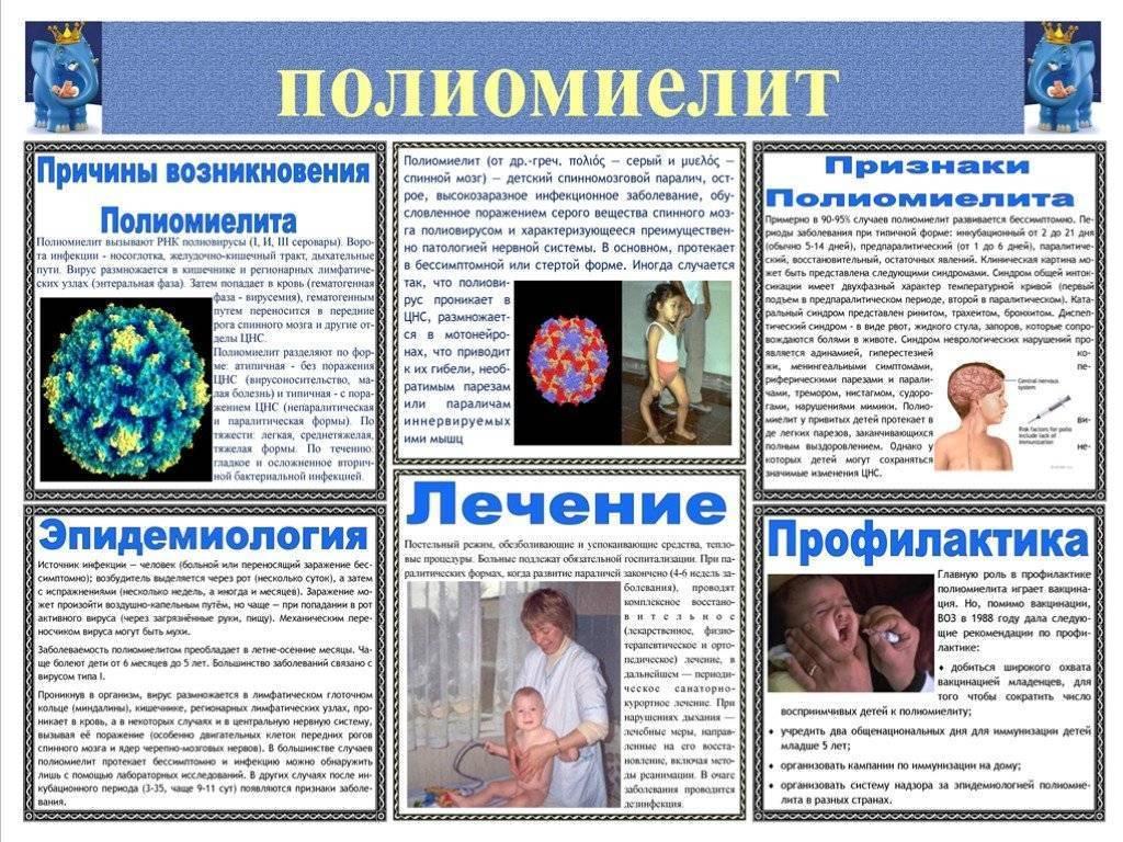 Полиомиелит у детей (24 фото): симптомы, признаки и лечение, диагностика и инкубационный период заболевания, последствия