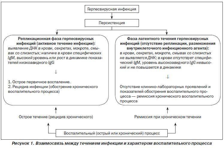 Цитомегаловирус у детей: симптомы и лечение цитомегаловирусной инфекции у ребенка