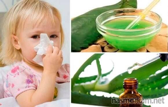 Алоэ от насморка для детей (капли в нос): готовим сок самостоятельно | препараты | vpolozhenii.com