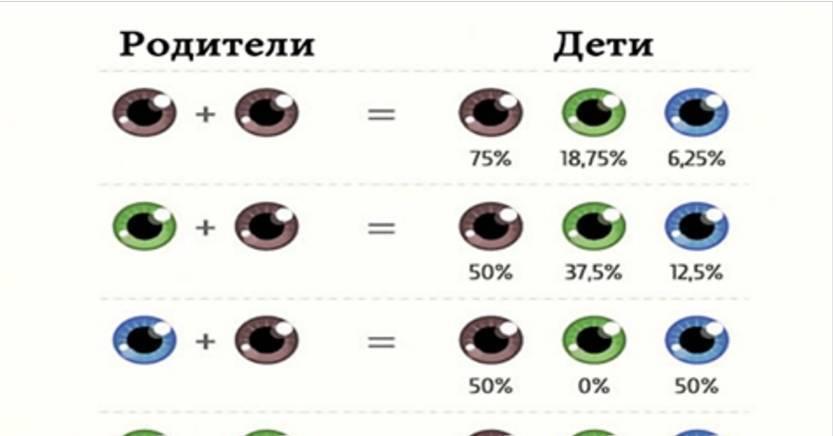 Цвет глаз у ребенка от родителей: таблица и механизм наследования