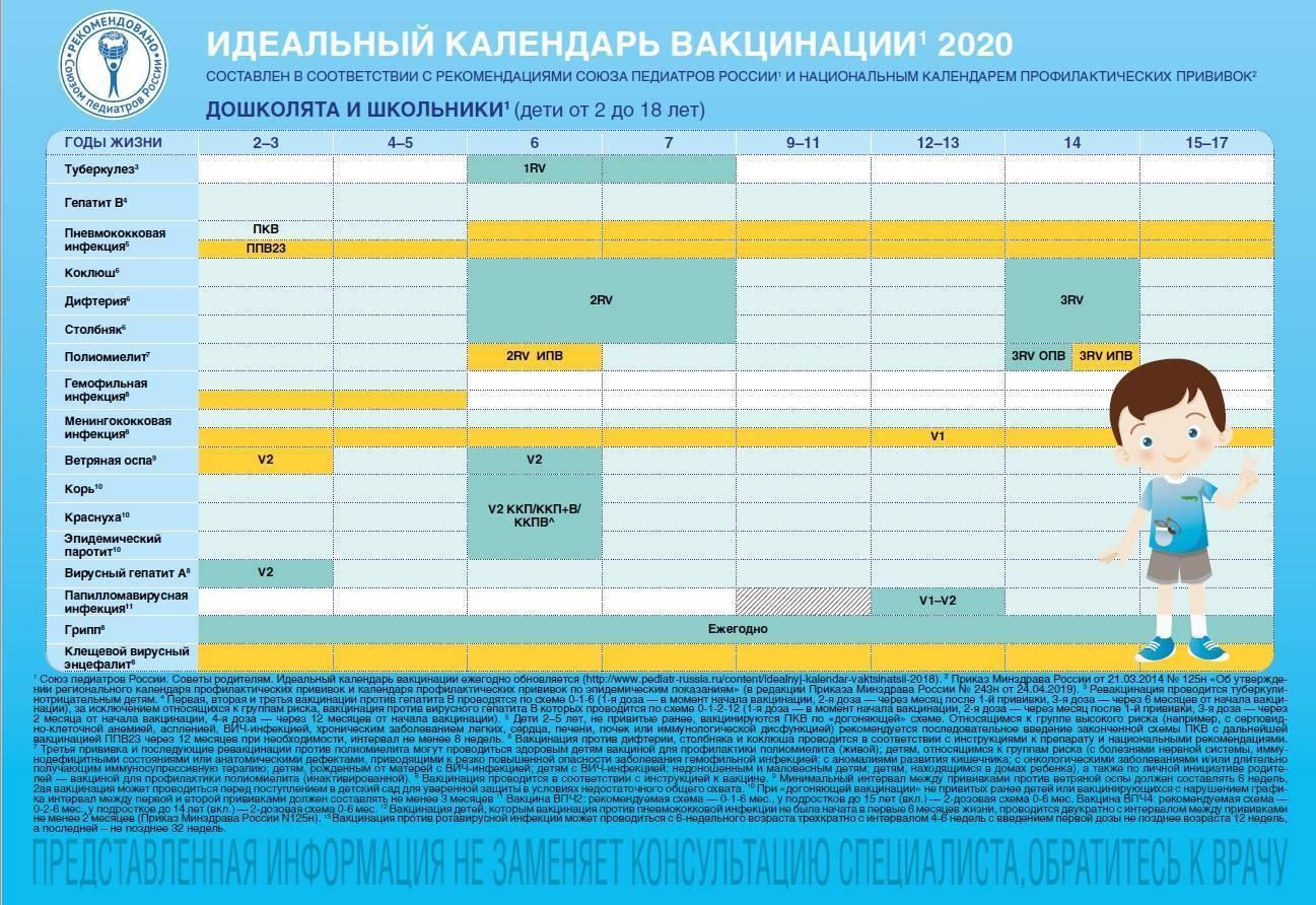 Национальный календарь прививок детям на 2018 год: календарь профилактических прививок и по эпидемическим показаниям