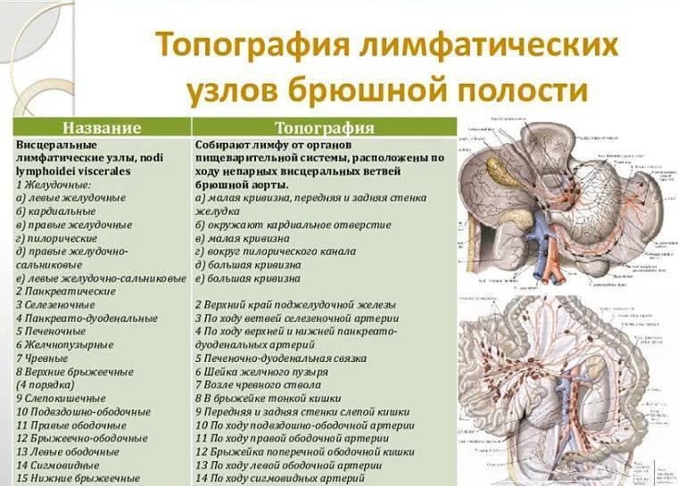 У ребенка в брюшной полости увеличены лимфоузлы, что делать