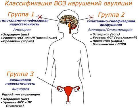 Почему при приеме противозачаточных таблеток джес нет менструации, что делать при задержке после отмены препарата?