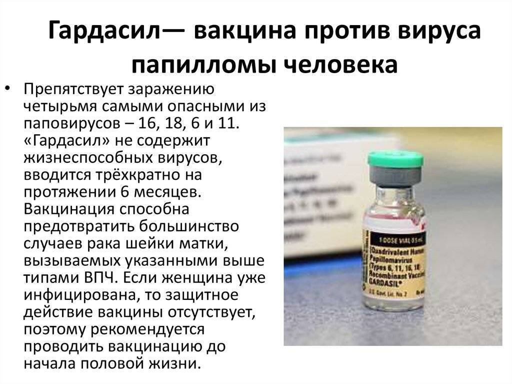 Ученый рассказал о вакцине, защищающей детей от впч — российская газета