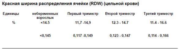 Rdw в анализе крови – что это такое, как определяют эритроцитарный индекс?